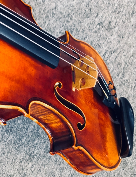 Violin front angle