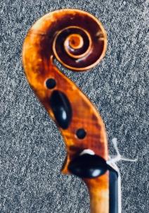Violin scroll side